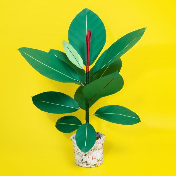 jungla, plantas de papel 1