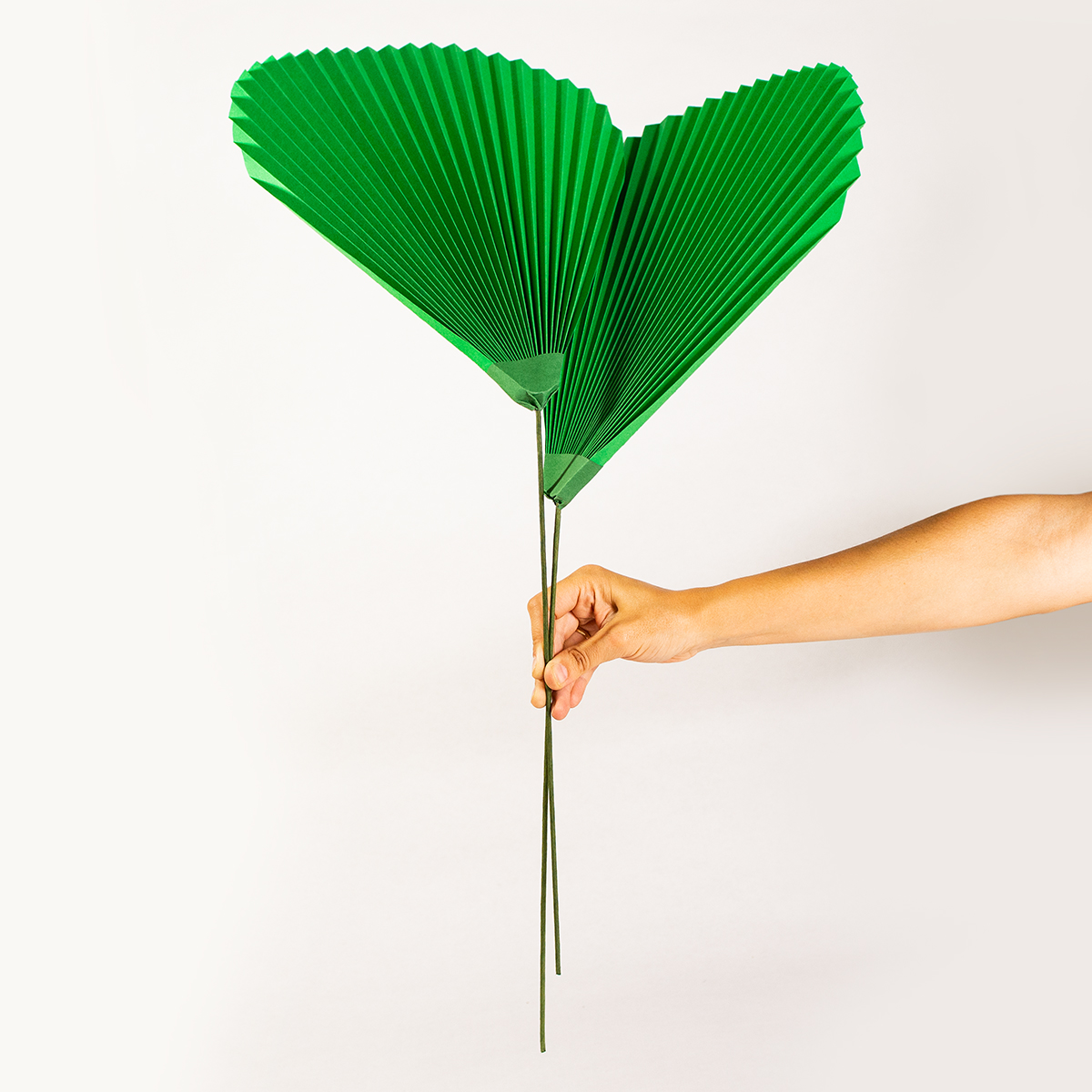 jungla, plantas de papel hojas de palma