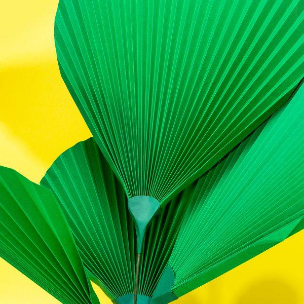 jungla, plantas de papel hojas detalle de palma detalle