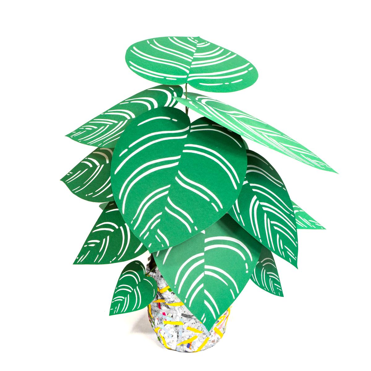 jungla plantas de papel regalo pinstripe