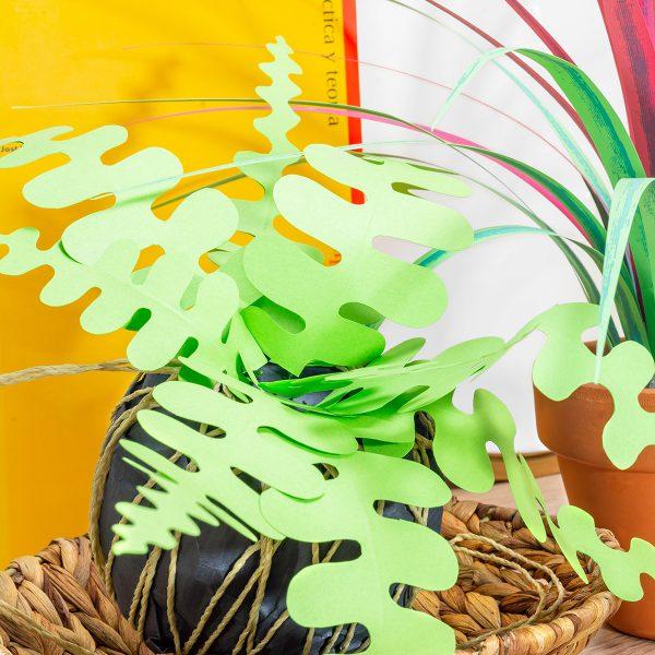 jungla, plantas de papel. kokedama helecho