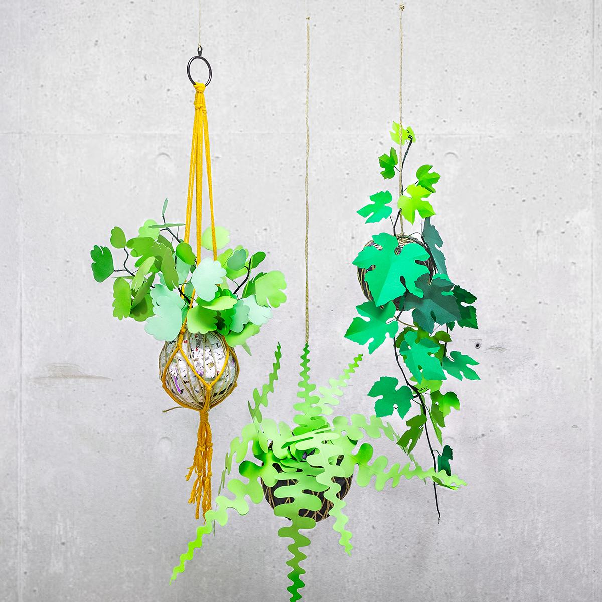 jungla, plantas de papel. Kokedamas