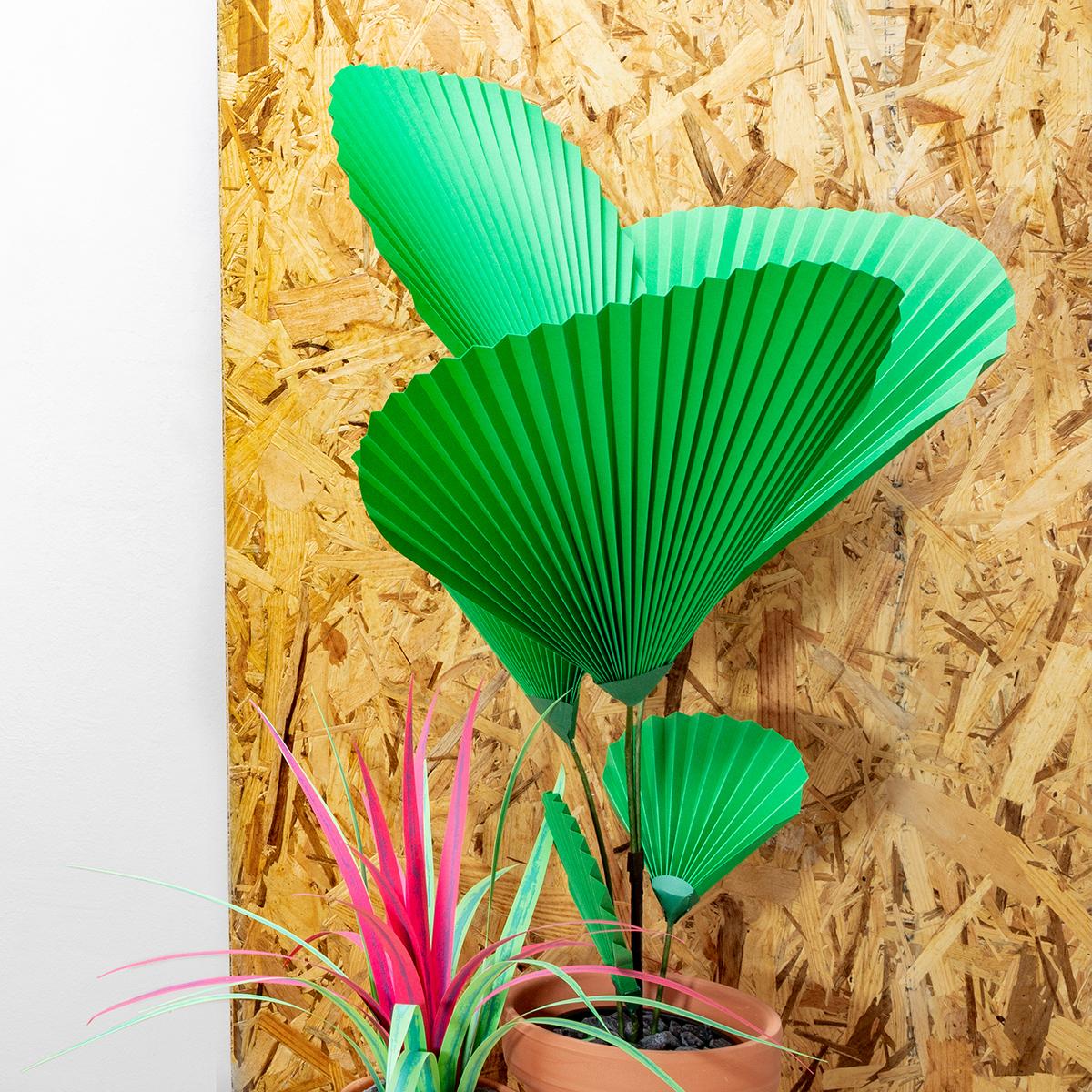 jungla, plantas de papel, palma y cinta