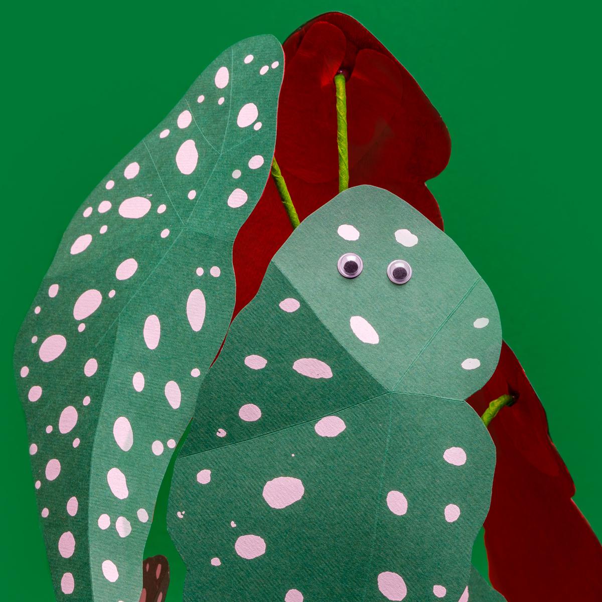 Jungla, plantas de papel polka dot ojos