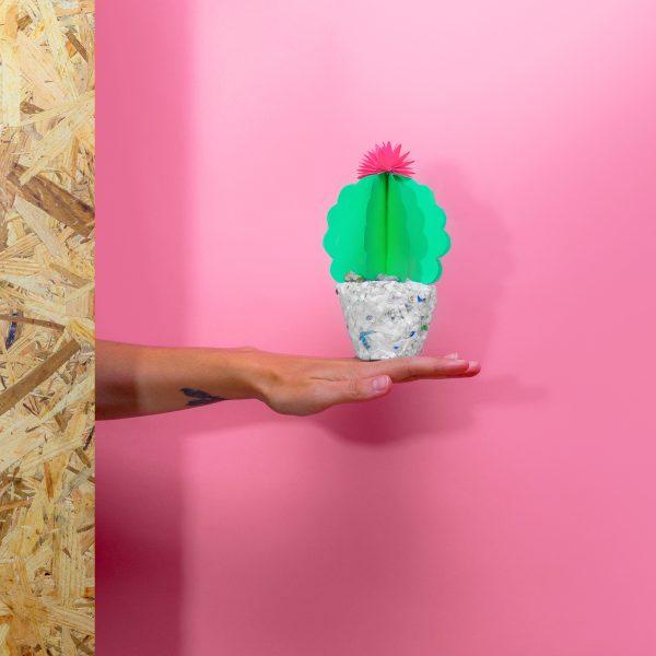 Jungla, plantas de papel cactus2