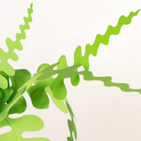 jungla, plantas de papel. Detalle helecho
