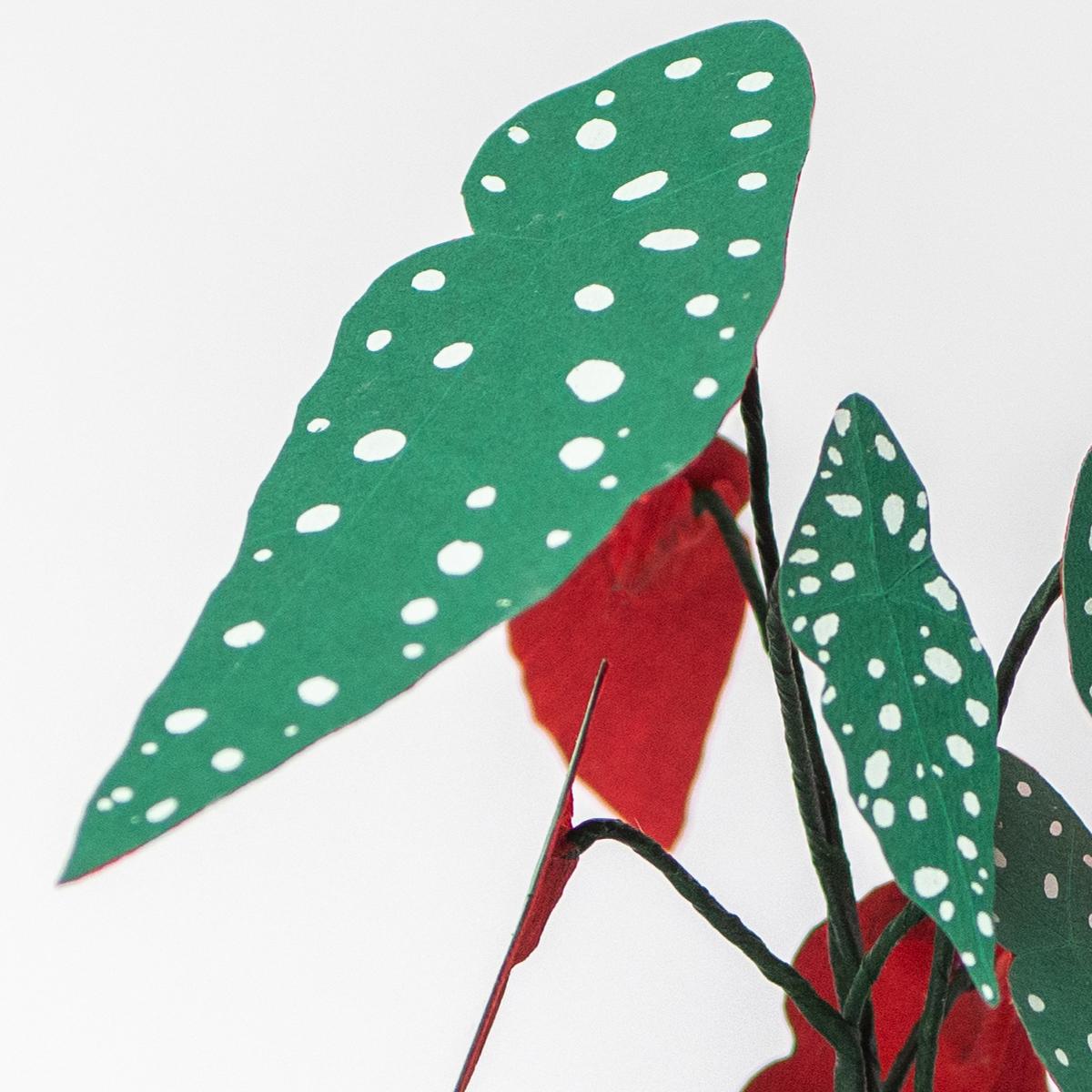 Jungla, plantas de papel polka dot mini2