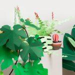 jungla, plantas de papel. ramas de vid1