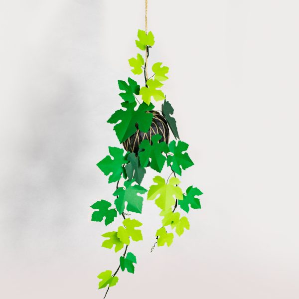 Jungla plantas de papel, kokedama vid